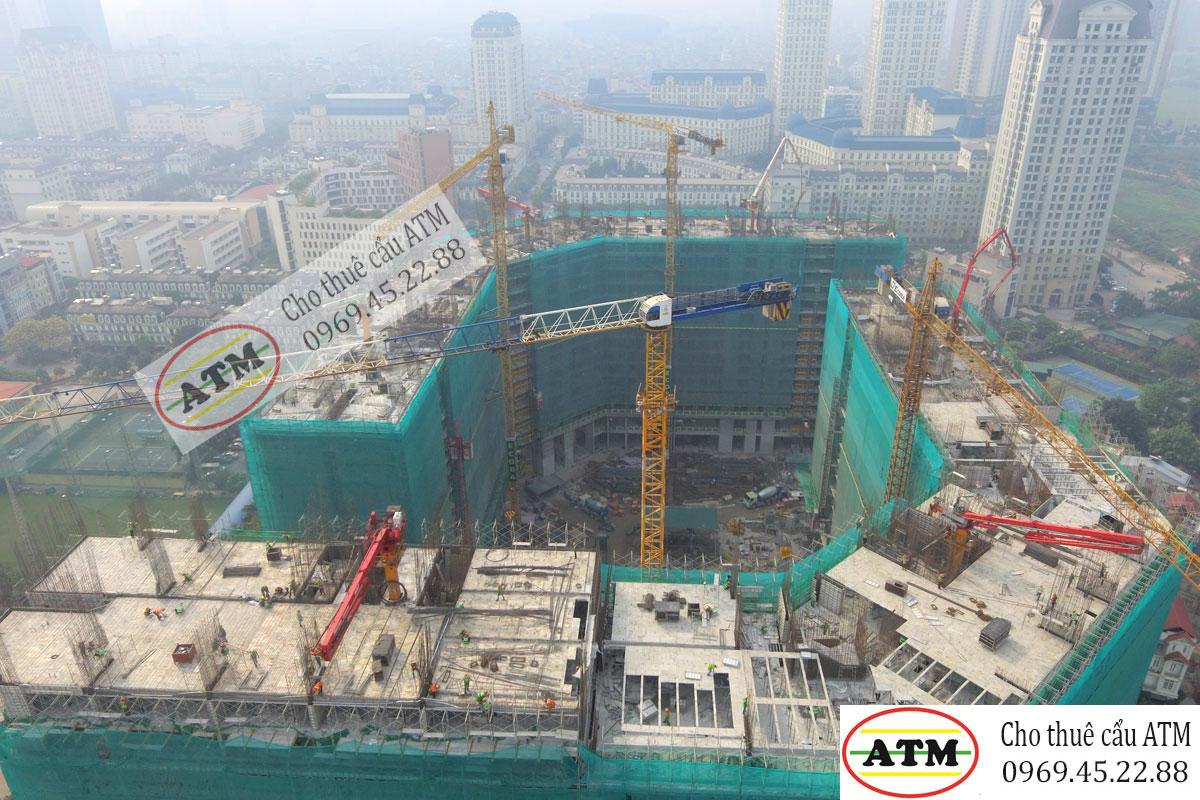 Cho thuê cẩu tháp Zoomlion 6 tấn chuyên nghiệp