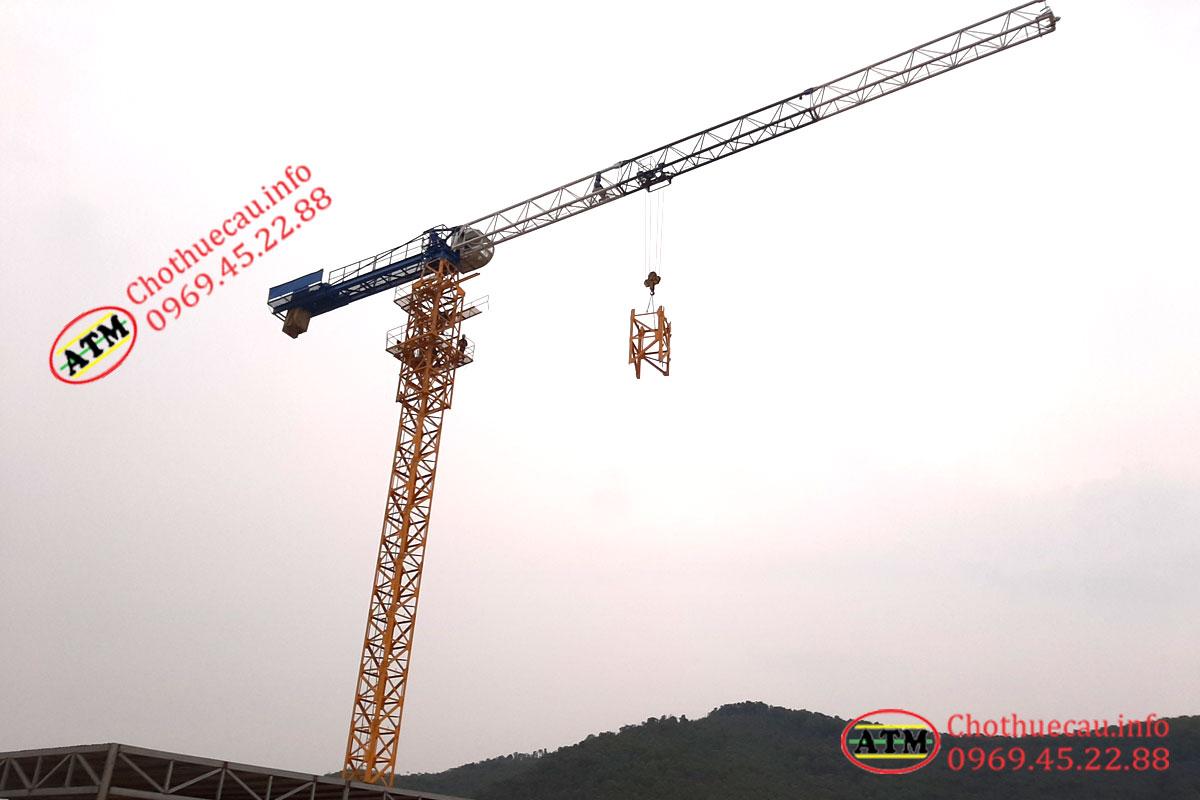 Cho thuê cẩu tháp tại Bắc Giang uy tín, chuyên nghiệp