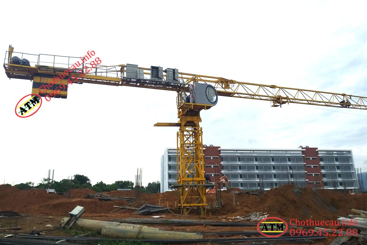 Cho thuê cẩu tháp tại Hà Nội, uy tín, chuyên nghiệp